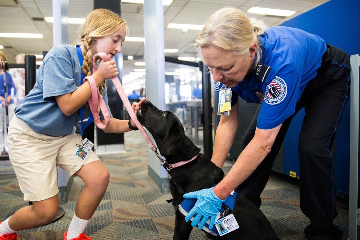 Pups - Key, TSA