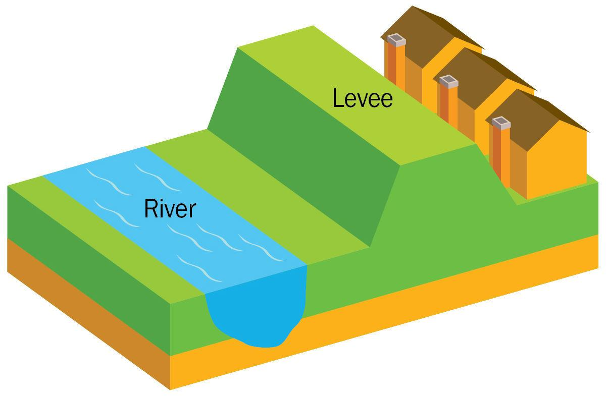 What is a levee?