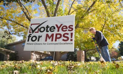 Millard levy vote