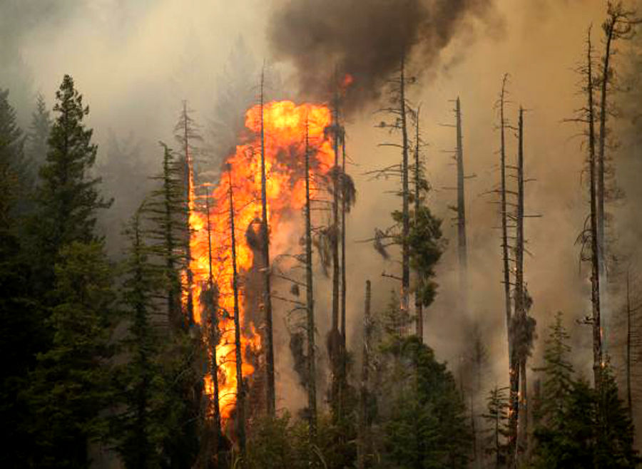 Chelan Complex fire-growth slowed