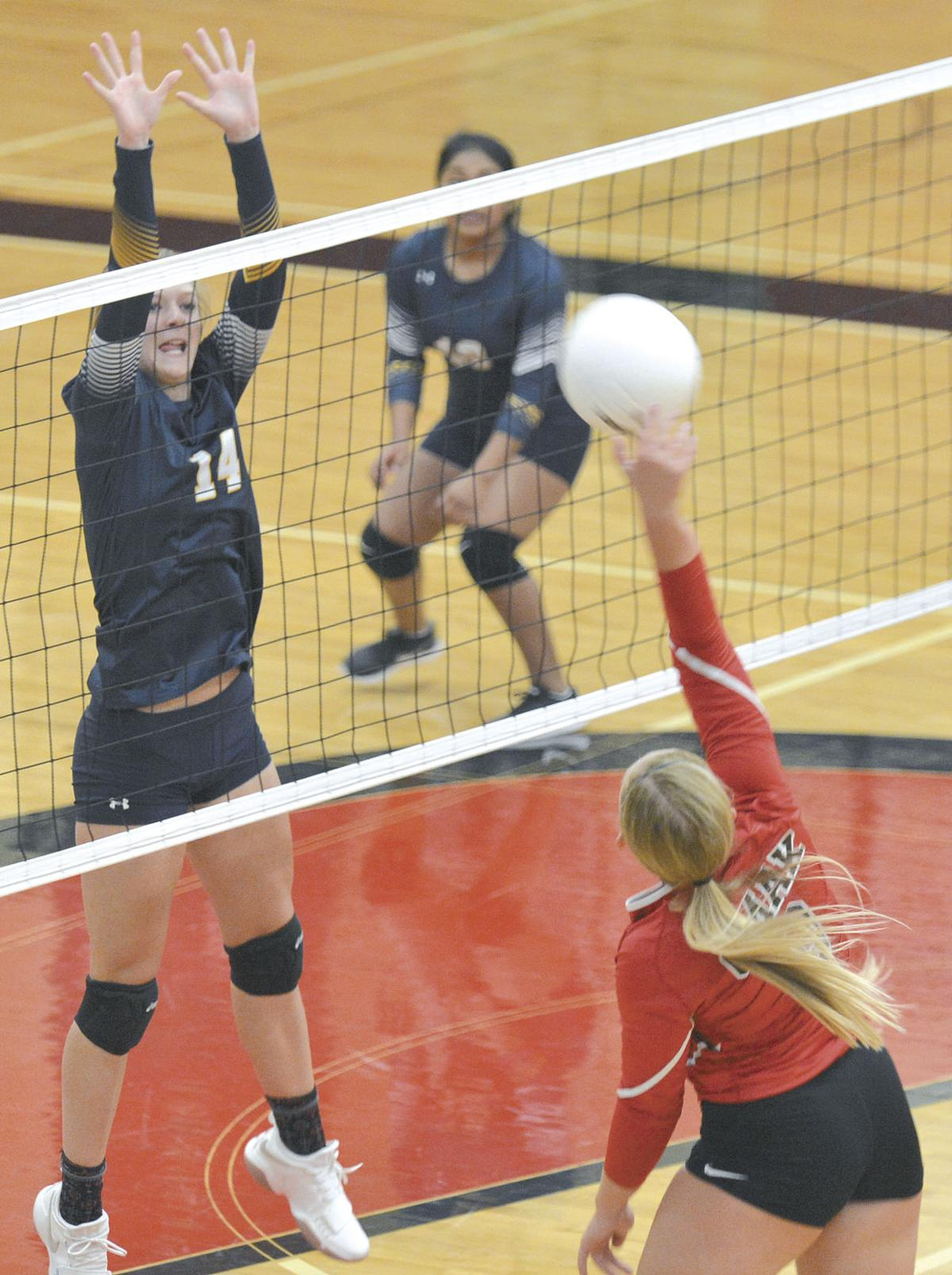Volleyball teams get rolling