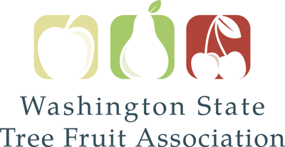 wash state tree fruit assn