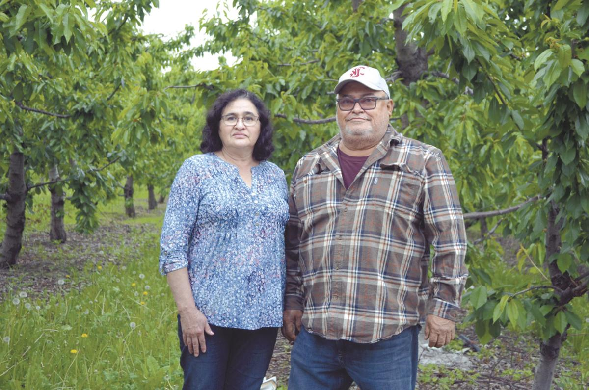 Partially flooded growers hold on to hope
