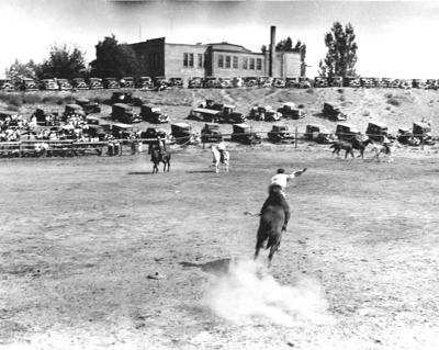 historic stampede