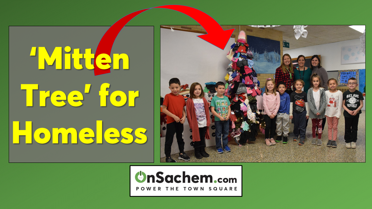 Nokomis Students Build a 'Mitten Tree' for the Homeless