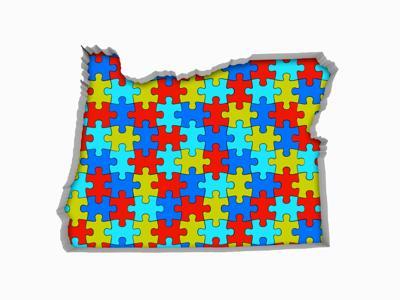Redistricting puzzle