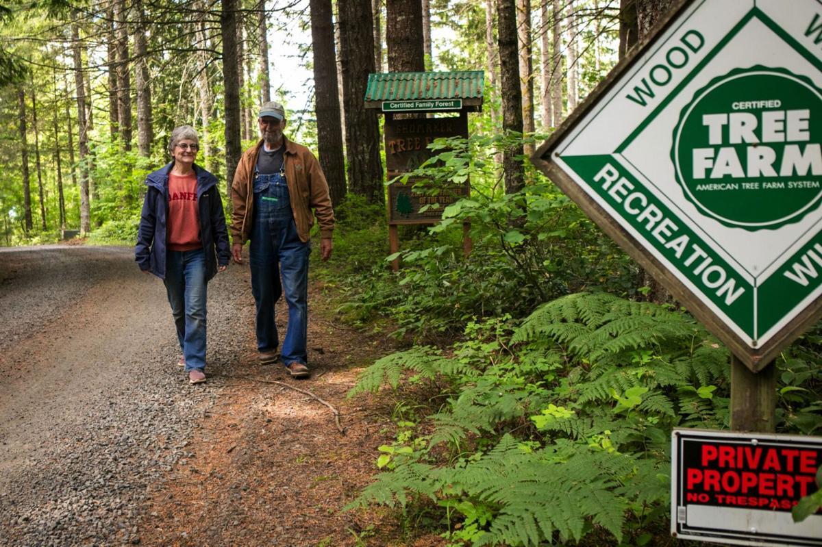 0617--Small Woodlands Fire-04.jpg
