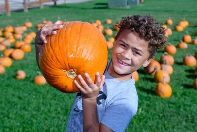 Pure Integrity Homes hosts annual Fall Fest