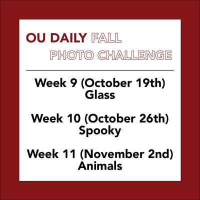 OU Daily Fall Photo Challenge Weeks 9-11