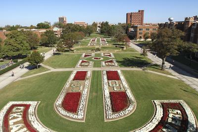 South Oval Landscaping
