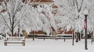 Snow on the South Oval
