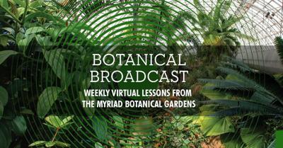 Botanical Broadcast
