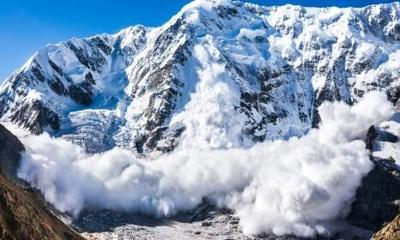 Avalanche Safety Picture
