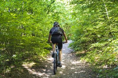 Hikers With Mountain Bike Into Forest Path (Photo) Credit deimagine (iStock)