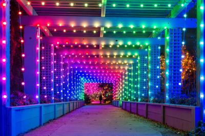 Deer With Christmas Lights In Colorado Springs 2020 15 Events You Can't Miss this Winter in Colorado (2019 2020