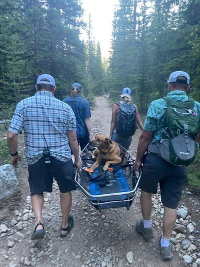 Photo Credit: Chaffee County Search and Rescue North.