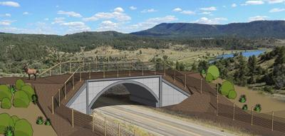 This image is an artist rendering of a wildlife overpass on US 160, CO 151. Photo Courtesy: CDOT.