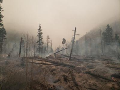 Damage caused by the East Troublesome Fire in Rocky Mountain National Park. Photo Credit: Rocky Mountain National Park.
