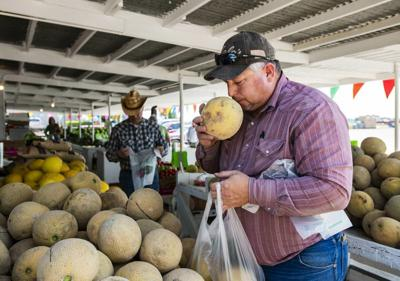 An Inside Look at Colorado's Famous Rocky Ford Melons