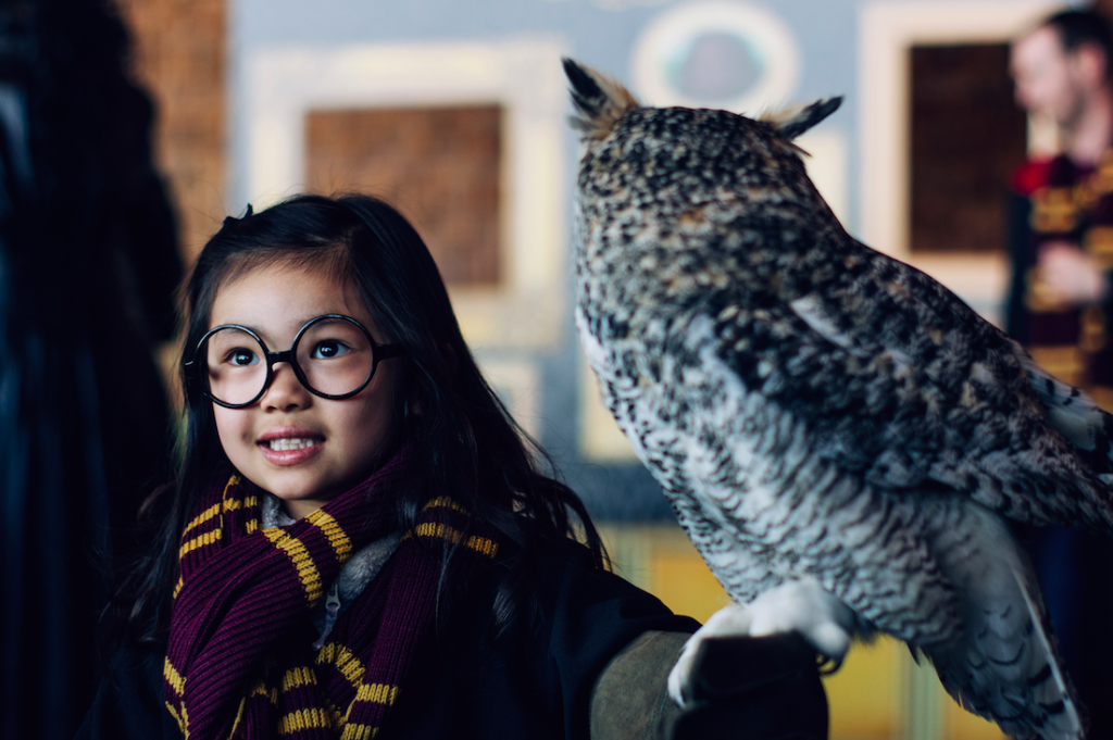 Harry Potter inspired brunch coming to Colorado