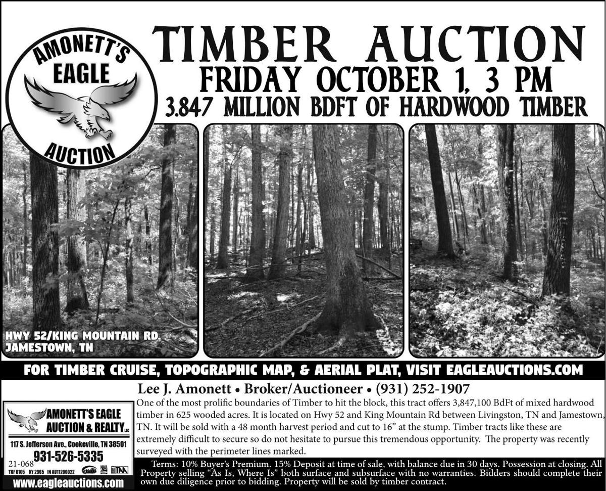 Timber Auctions
