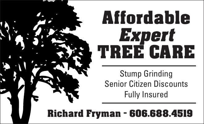 Affordable Expert Tree Care