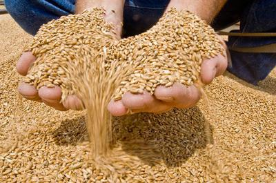 Tennessee Grain Indemnity Fund reaches $10 million