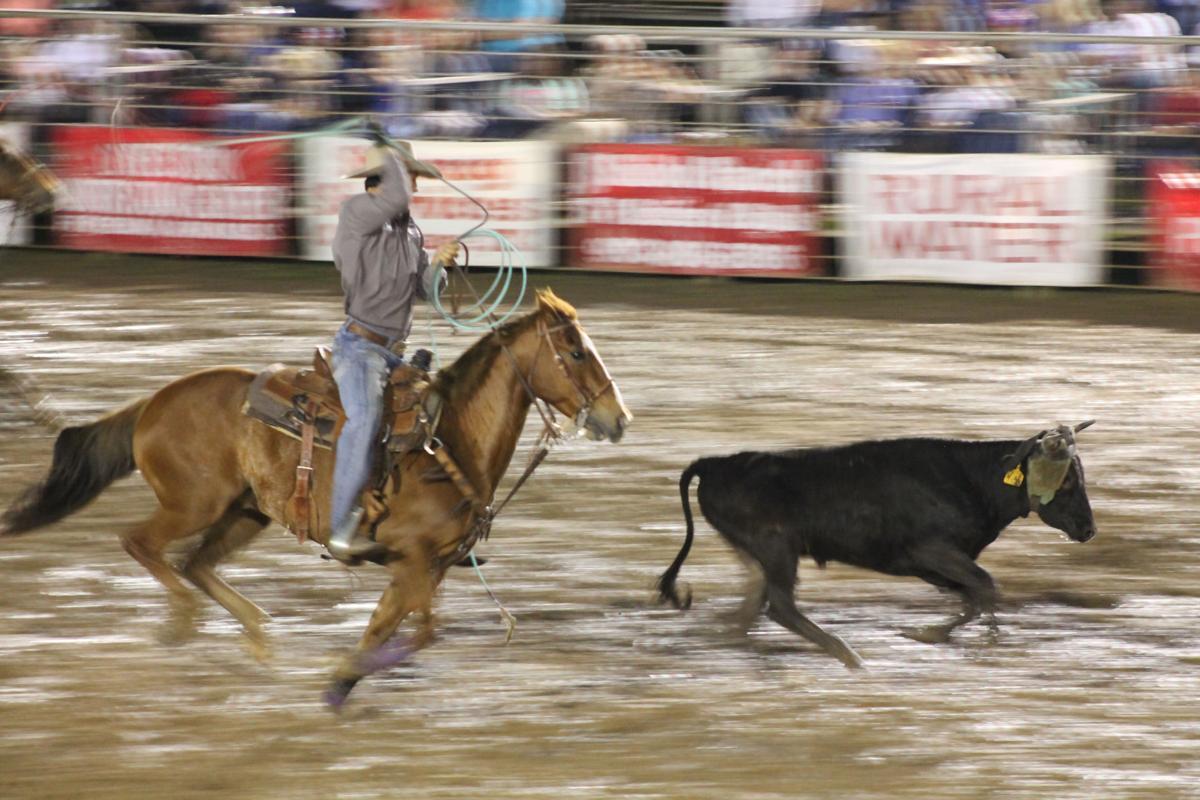pro rodeo 2019