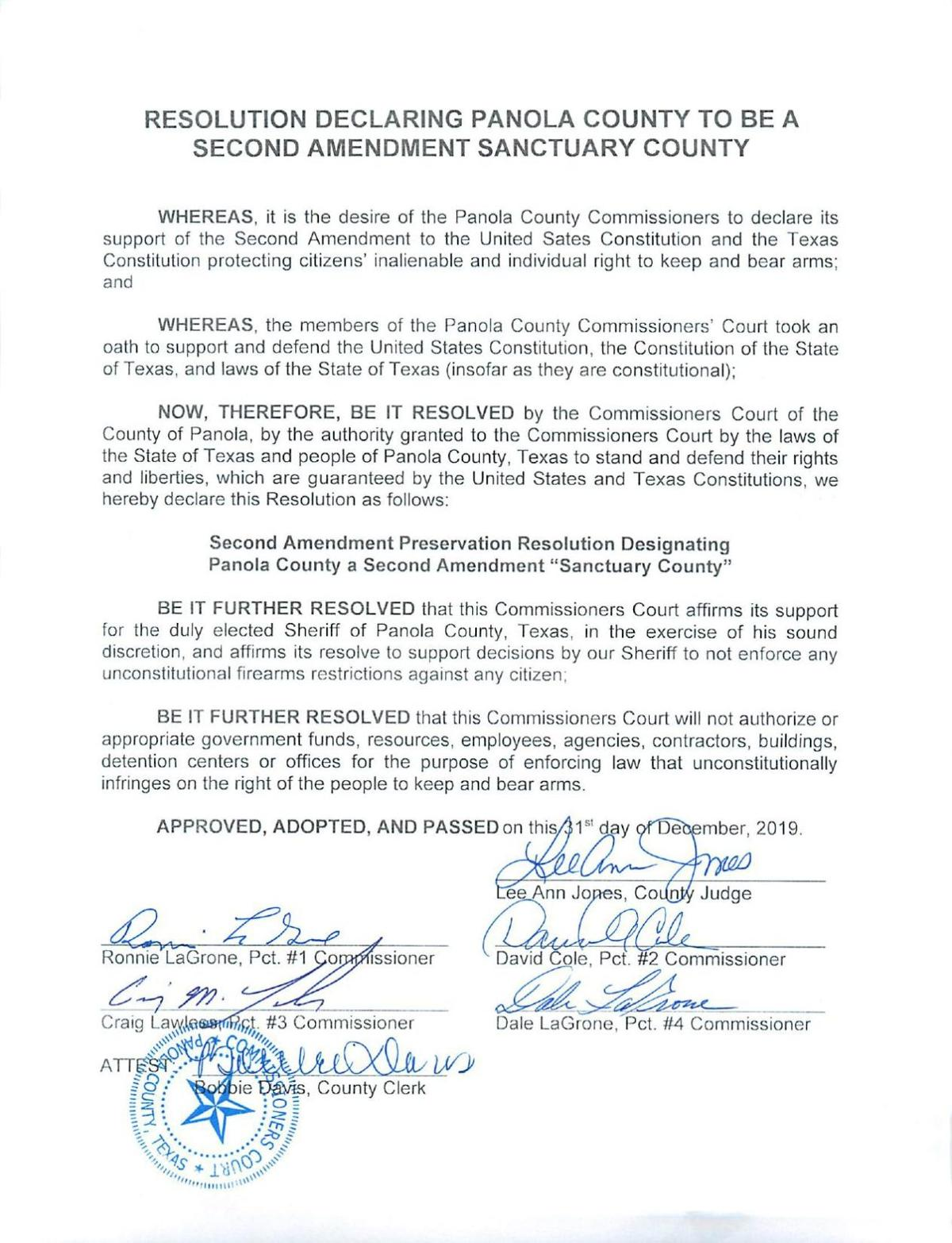 'Second Amendment Sanctuary County' resolution