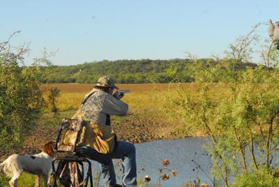 Run on guns, ammo could affect hunters this fall