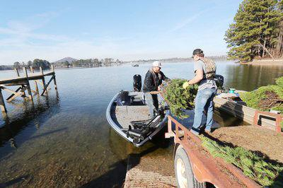 Christmas trees become 'Habitat for the Holidays'
