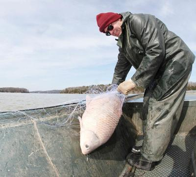 Comment on proposed Arkansas fishing regulations changes