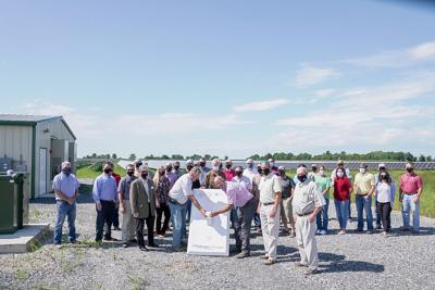 Solar energy project up and running in Northeast Arkansas