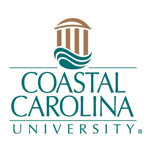 Restauri earns award for online education leadership at CCU