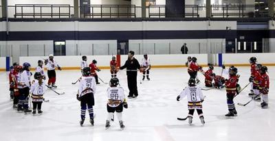 Sports groups ask for government help in getting Canadians back playing again
