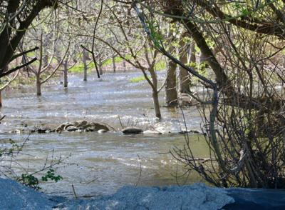 d43ab0a73e32 Eneas Creek spilled its banks last year