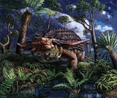 Fermenting ferns? Rare dinosaur stomach fossil opens door to ancient world