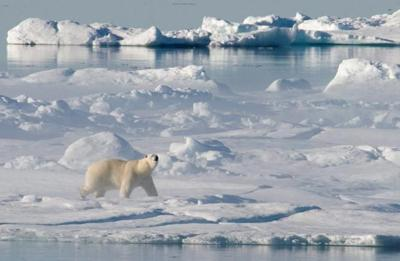 New federal Arctic policy focuses on human health, environment, infrastructure
