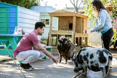 Animals, people rescue each other in heartfelt docuseries
