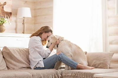 Young pretty woman in casual clothes hugging her beloved big white dog sitting on the sofa in the living room of her cozy country house. Animal communication concept