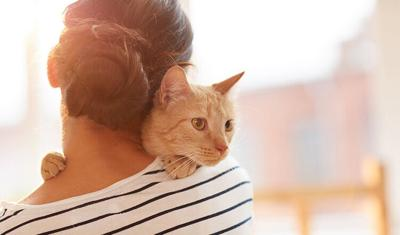Back view portrait of young woman holding gorgeous ginger cat on shoulder, copy space