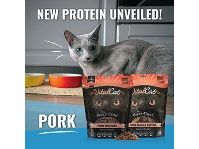 carnivore meat company new protein.png