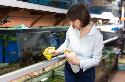 Saleswoman cleaning fish tanks