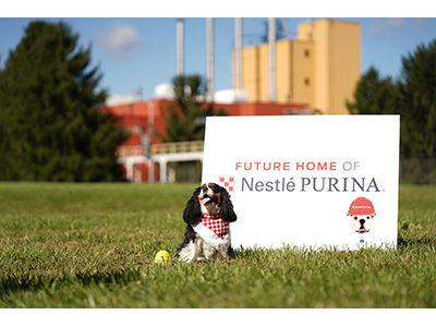 Purina photo.jpg