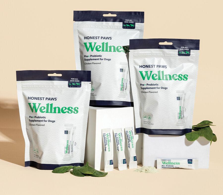 NR3 Honest Paws - Probiotics.jpg