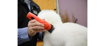 Tips and Tricks for Using Comb Attachments in Pet Grooming