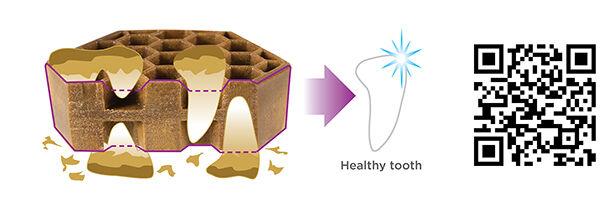 !PR17 - Pet's Best Life Yummy Combs Ingenious Flossing Treats.jpg