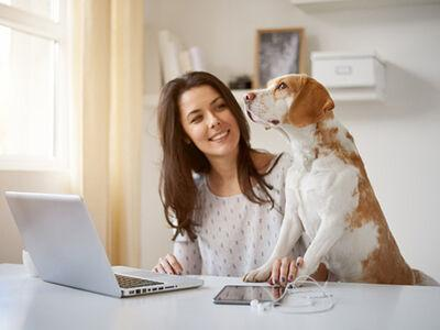 How COVID-19 is Impacting Pet Care
