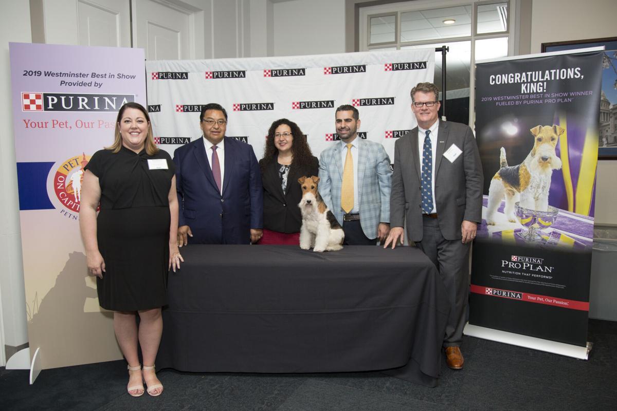Pet Night on Capitol Hill 2019