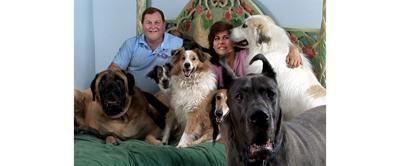 A Giant Step Forward for Canine Nutrition